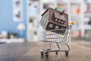 32. díl: Koupě nemovitosti: Připravte se na povolení, kolaudaci idaně
